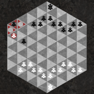 Pawn can be promoted to a Queen if it reaches the back row of spaces touching the back sides.
